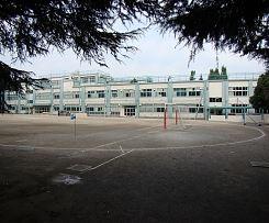 中学校:大宮中学校 1100m 近隣