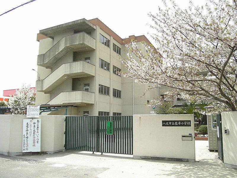 小学校:八尾市立龍華小学校 1006m 近隣