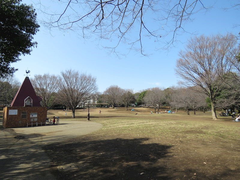 周辺環境(里帰りの桜が名所の祖師谷公園)