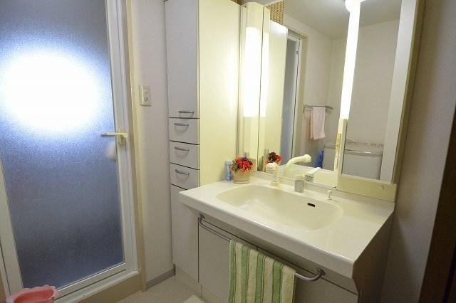 洗面はシャワー付きです。隣に棚がありタオルなど収納できます。