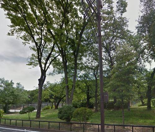 公園:都立青山公園 271m