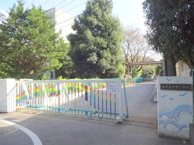 小学校:柏市立中原小学校 755m