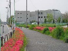 図書館:世田谷区立鎌田図書館 474m 近隣