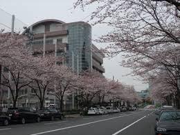 中学校:中央区立晴海中学校 1676m