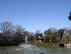 公園:碑文谷公園 512m
