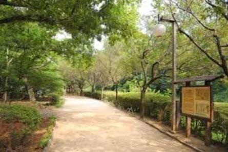 公園:駒場野公園 450m