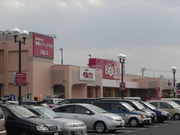 ショッピング施設:100円ショップ 1300m