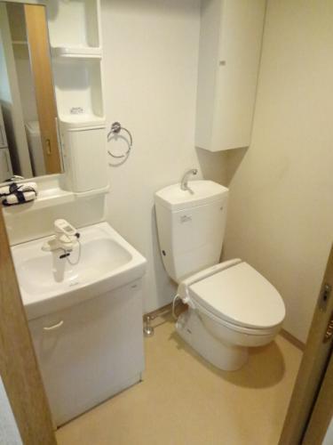 独立洗面台とウォシュレットトイレ。