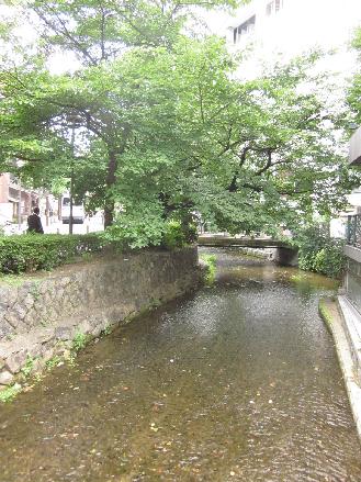 海または川:高瀬川に隣接しており、桜・紅葉のシーズンは必見です。 16m