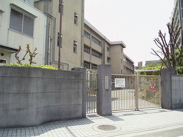 中学校:八尾中学校 1000m
