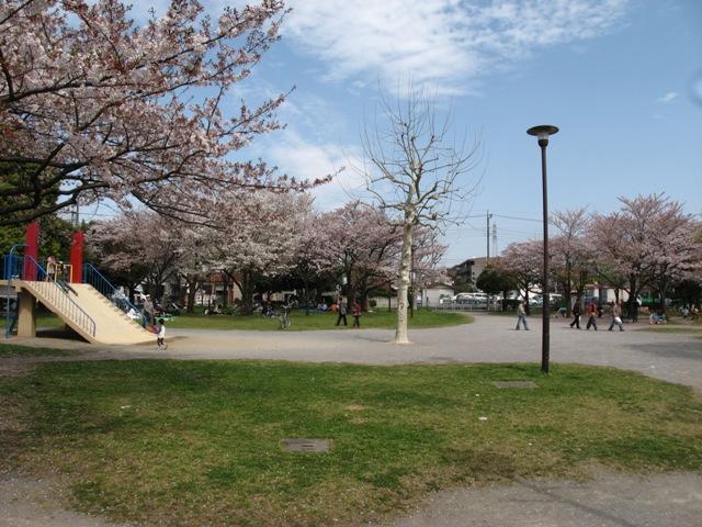 公園:西新井みどり公園 419m