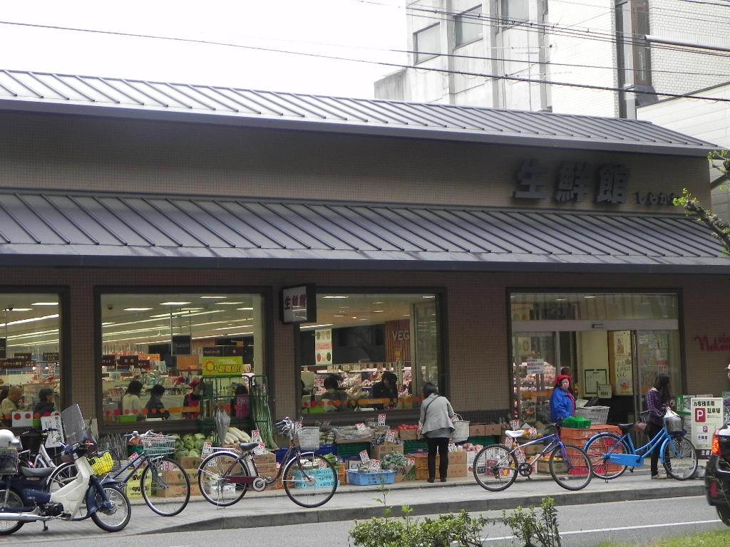 スーパー:生鮮館なかむら 白川店 1000m