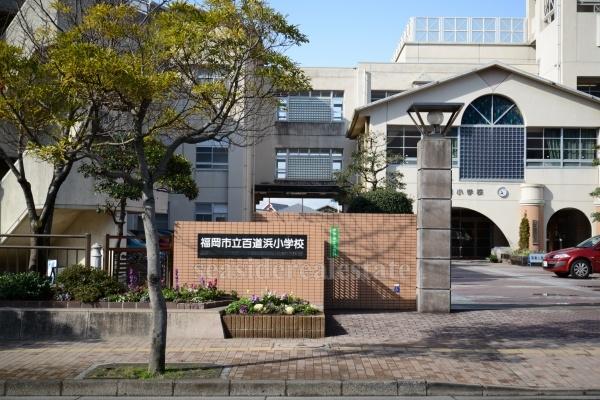 小学校:百道浜小学校 220m 望む