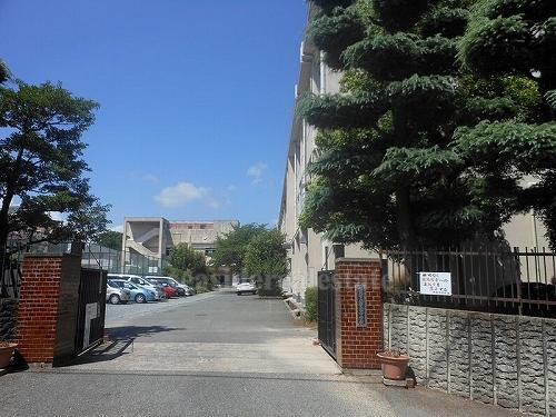 中学校:警固中学校 200m