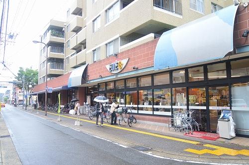 スーパー:エルロク六本松店 450m 近隣