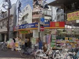 ドラッグストア:セイジョー新丸子店 780m