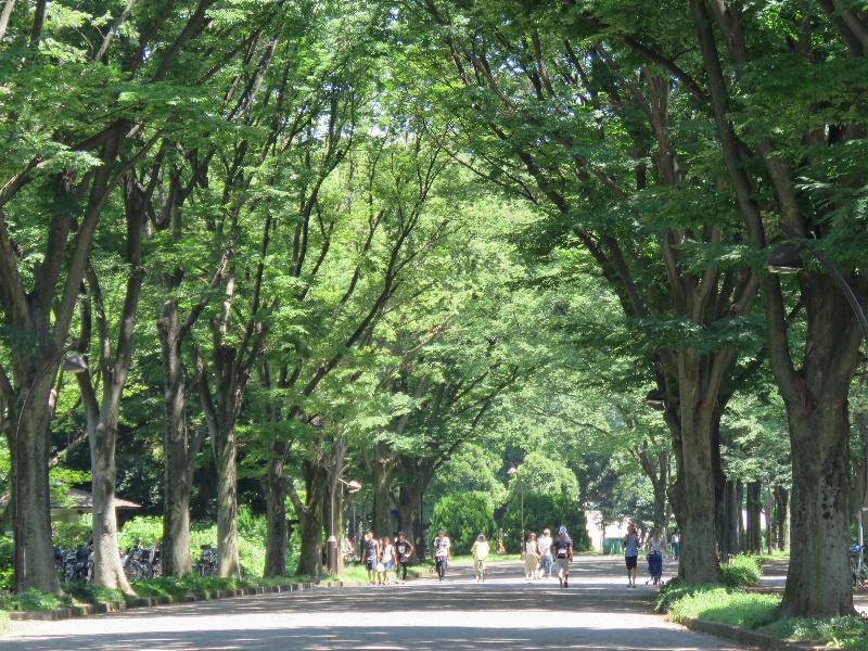 周辺環境(駒沢オリンピック公園)