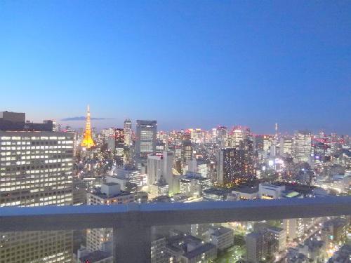 東京タワー&スカイツリー♪