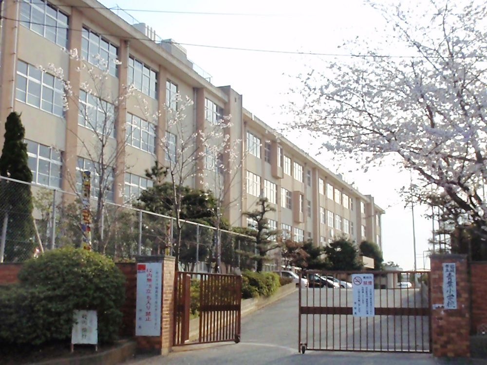 小学校:青葉小学校 1200m