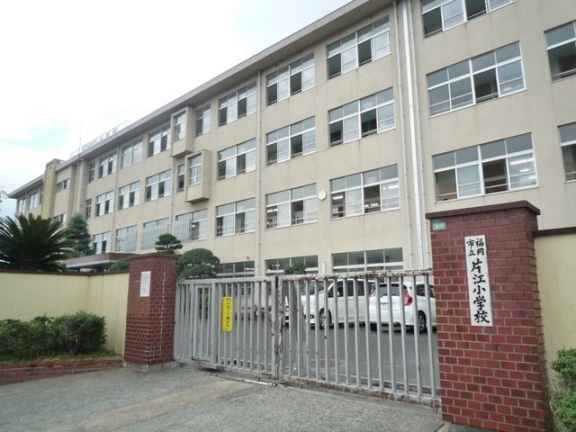 小学校:片江小学校 600m