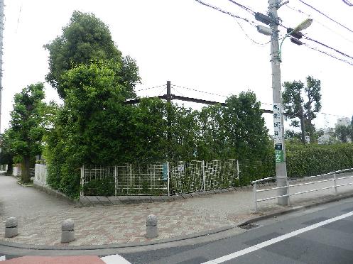 小学校:世田谷区立桜丘小学校 505m