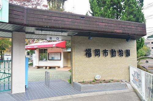 公共施設:福岡市動物園 800m