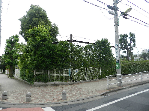 小学校:世田谷区立桜丘小学校 652m