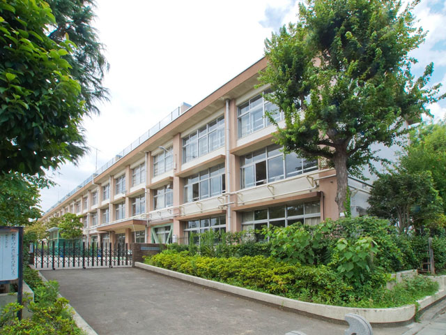 小学校:練馬区立豊玉小学校 599m