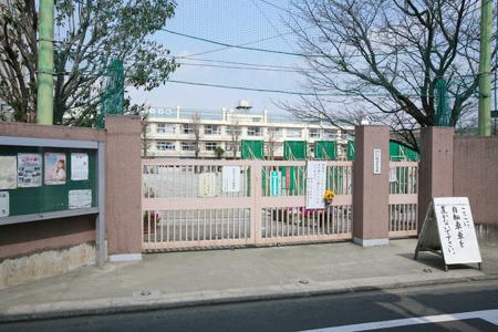 小学校:世田谷区立経堂小学校 559m