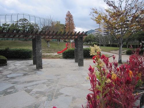 公園:柏原中央公園 432m