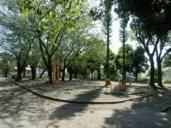 公園:紫原中央公園 319m