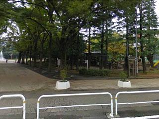 公園:世田谷公園 800m
