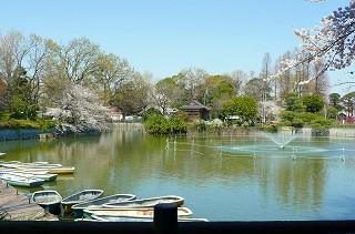 公園:碑文谷公園 240m
