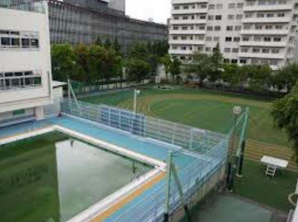 小学校:渋谷区立神南小学校 1203m 近隣