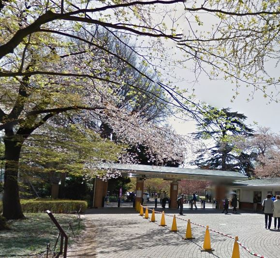 公園:新宿御苑(千駄ヶ谷門) 750m 近隣