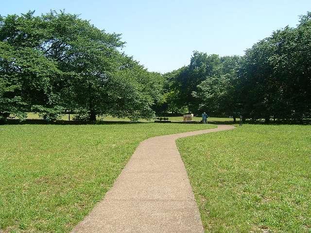 公園:砧公園 1053m