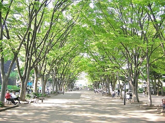 公園:JRA馬事公苑 985m