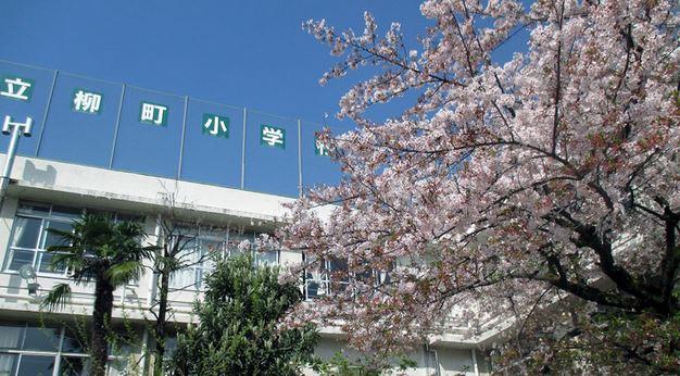 小学校:文京区立柳町小学校 372m