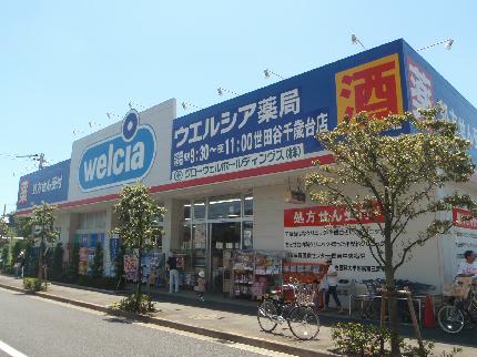 ドラッグストア:ウエルシア世田谷千歳台店 83m