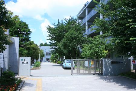 小学校:世田谷区立船橋小学校 300m