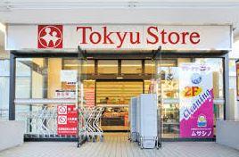 スーパー:清水台 東急ストア 520m
