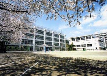 小学校:世田谷区立希望丘小学校 358m