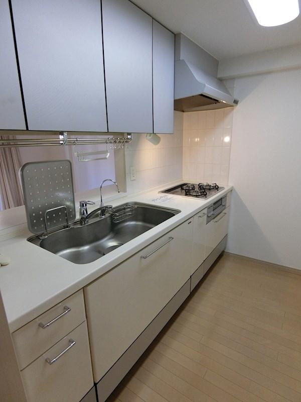 浄水器つきのシステムキッチン
