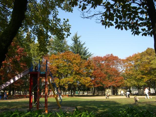 公園:横枕西公園 400m