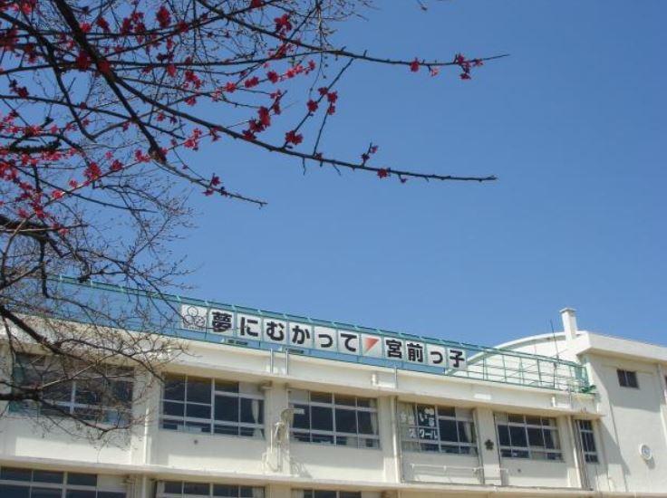 小学校:品川区立宮前小学校 379m