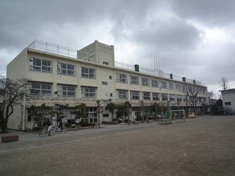 小学校:世田谷区立芦花小学校 610m