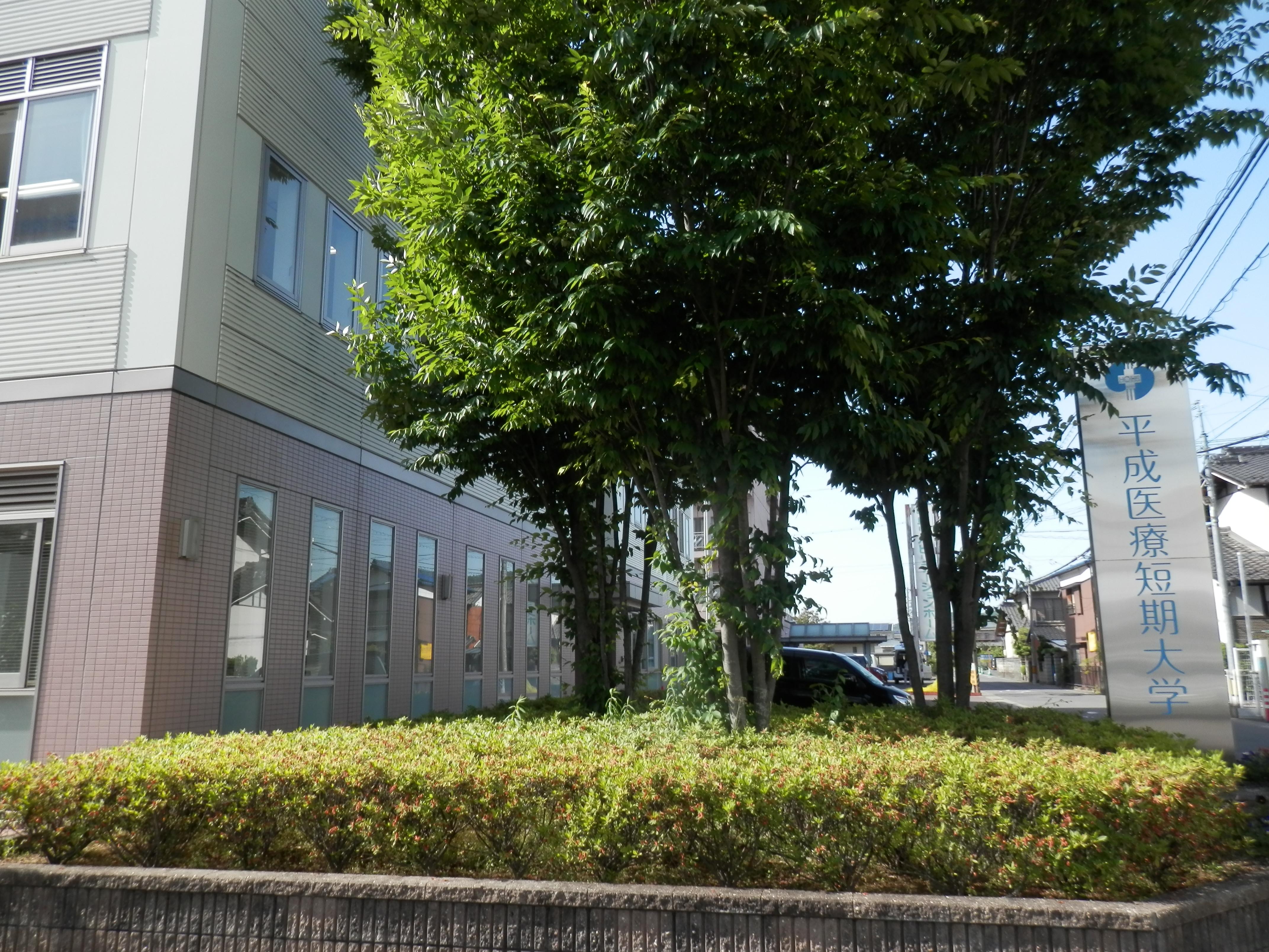 大学・短大:私立平成医療短期大学 733m 近隣