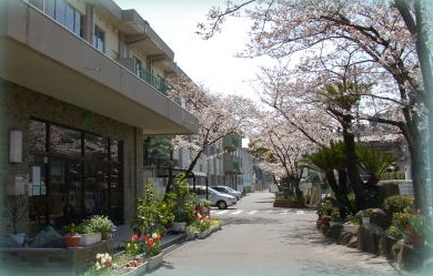 小学校:北九州市立若松中央小学校 596m