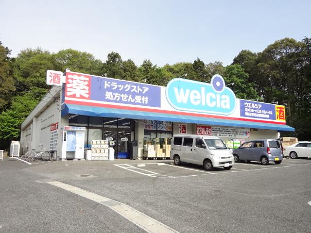 ドラッグストア:ウエルシア 柏名戸ヶ谷店 964m