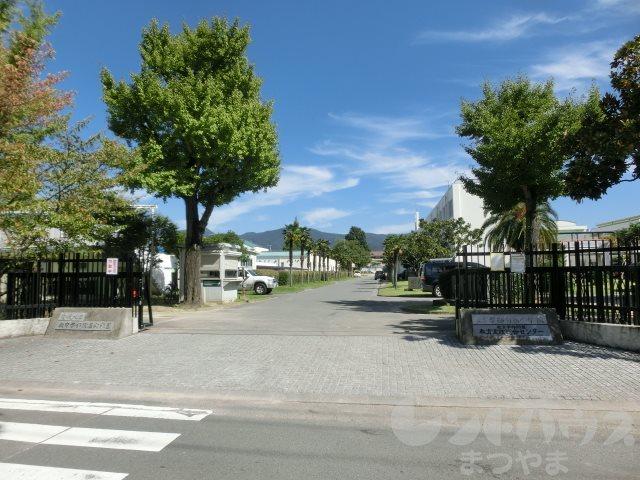 小学校:愛媛大学教育学部附属小学校 501m